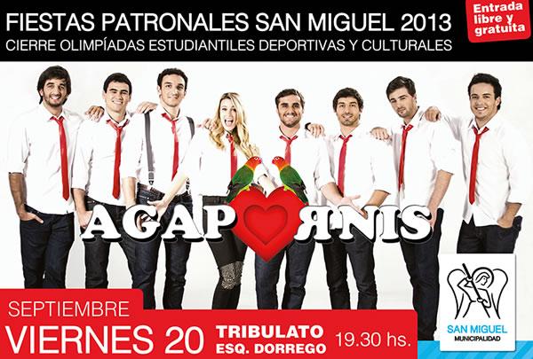 Agapornis-en-San-Miguel