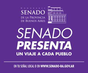 Honorable Cámara de Senadores de la Provincia de Buenos Aires